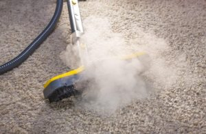 steam clean carpet