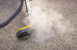 steam clean carpet